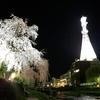 盛岡の夜桜 2019