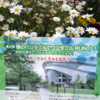 【速報】春のベジタブルでワンダフルRUN