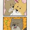 チベットスナギツネの砂岡さん「ボーイフレンド」