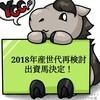 YGG2019年度募集馬再検討、出資馬決定!