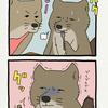 (過去編)チベットスナギツネの砂岡さん「ハンバーグ」