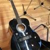【機材】Sepia Crue アコースティックギター レビュー