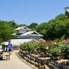 菊間かわら館 バラ園