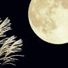 10月の星の動きと星空☆彡