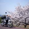 真冬のバイク生活を支えてくれたもの ~今冬購入のすごいあいつ~