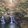 滝と紅葉が美しい。秋の赤目四十八滝の風景