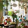 《本店1階》夏ウエディング!*Botanical Summer&Hawaiian*