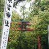 2000年以上 大楠サマは私たちを見ている~来宮神社~
