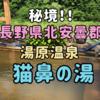 【秘境】湯原温泉「猫鼻の湯」大自然の中で貸切露天風呂がオススメ!