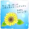 8月の花〜明るいだけじゃない向日葵~