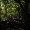 2016年10月15日 (土) 奥多摩・三頭山 ブナの森ハイク&森林ヨガ・レポート