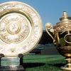 ウィンブルドン 2016 ドロー!トーナメント表と組み合わせ【全英オープン】