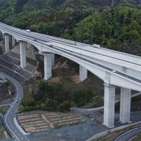 楊梅山高架橋