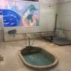 【別府市】浜脇温泉 東町温泉~別府市で最も早く開店する共同風呂