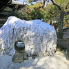 悪縁を切り良縁を結ぶ! 京都の安井金比羅宮を参拝してきました。