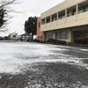 雪が舞っています