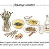 Asparagi selvatici「野生アスパラガス」