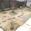 庭に小道を(検討編その1)