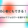 【Twitter】初心者ブロガーにもできる!フォロワーの増やし方7項目