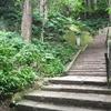 トレーニングを兼ねて山寺に登った話。