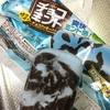 明治:チョコミントアイス