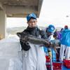 2020年10月26日 小浜漁港 お魚情報