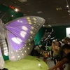 国立科学博物館「昆虫」展に行きました