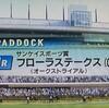2018.4.22(日) 第53回 フローラステークス GⅡ (プレイバック)
