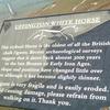 ■ England: December 2002, Uffington White Horse/ Uffington Castle/ Wayland's Smithy