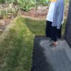 外構屋の張った芝。水やりが必要!根付かせる為に。