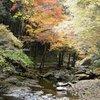 赤目四十八滝で耐寒紅葉めぐり2