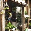 Cafe  Pipipi 湘南茅ヶ崎にあるフレンチトーストとスウィーツのカフェ♪