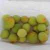 初めての梅干し作り:梅の塩漬け