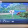 ナッシーの島…!?