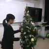生物環境工学科「クリスマスツリーを作りました!」