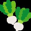 【野菜の保存】カブの栄養と保存方法