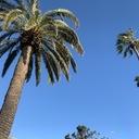 まいにちロサンゼルス*ときどき国立公園