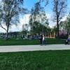 公園がそこら中にいっぱいのデュッセル