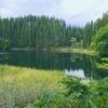 大柳上沼(秋田県東成瀬)