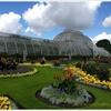 【世界遺産】これぞイギリスの庭園!キューガーデンを訪れました。