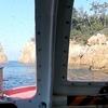 【長門】夫婦旅行で青海島観光遊覧船に乗る!クジラ船とイルカ船どっちになるか時の運!