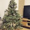 29w3d 少し早めのクリスマスモードへ( 艸`*)