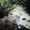 無職台湾の旅14日目 北投で温泉に入ったよ。