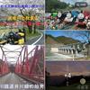 バイクから大井川鉄道に乗り換えると 雄大な天竜川の景観が、待っていた ^^!
