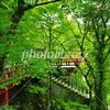 ご紹介、那谷寺が見られる小松半日観光ルート!