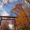 北海道神宮で終わりかけの紅葉を観てきました【国内一人旅北海道編-3】