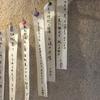 ずぶの学校新聞 no.41
