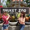プーケット動物園&タイガーキングダムへ行こう!