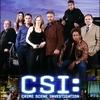 CSI:科学捜査班7 第8話 「シンクロニシティ」 Happenstance