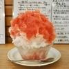 荻窪の「ねいろ屋」でデコポン、タロッコオレンジ。